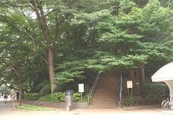 上野に古墳があるのご存知ですか?