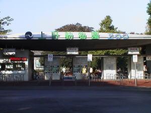 上野動物園の昔の正門をご覧になったことありますか?